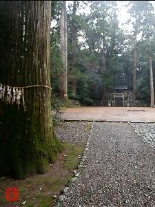 阿射加神社 (松阪市小阿坂)